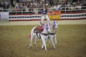 Equestfest
