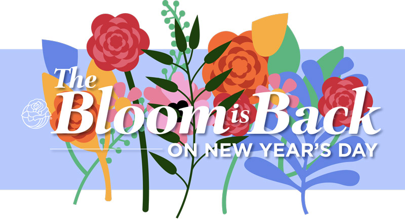 The Bloom is Back - On New Year's Day